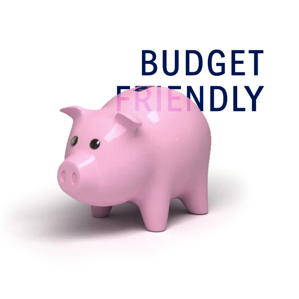 Budget-Friendly Web Design Services